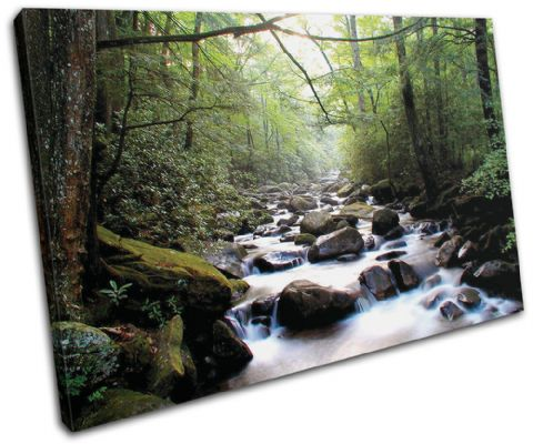Forest Stream ECO Landscapes - 13-0757(00B)-SG32-LO